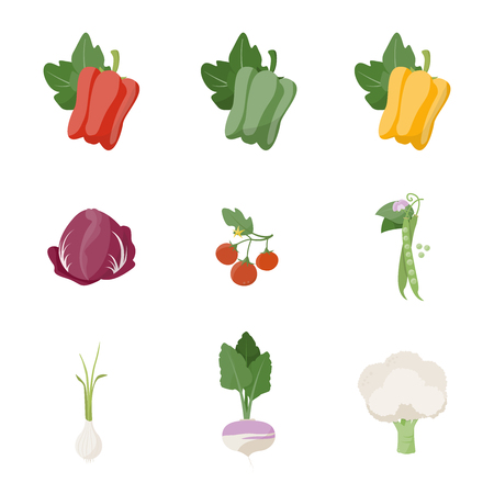 September Garden fresh vegetables on white background including bell pepper chicory tomato onion peas turnip and cauliflower
