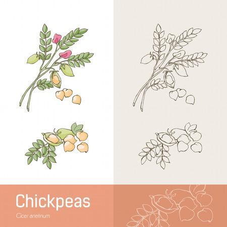 ilustracion: Mano garbanzos elaborados con vegetales, frijoles y flor Vectores