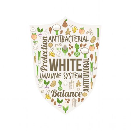 Verduras y frutas blancas con conceptos de texto en una forma circular, la dieta y el concepto de nutrición Vectores