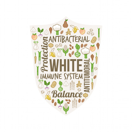 antioxidant: White vegetables and fruits with text concepts in a circular shape, dieting and nutrition concept Illustration