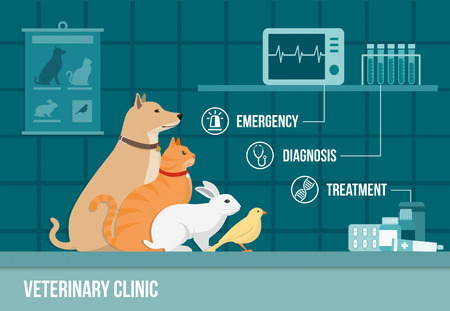 animals and pets: Veterinary clinic banner with dog, cat, rabbit, bird, medical equipment, drugs and icons set Illustration