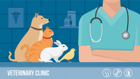 Veterinary clinic banner with dog, cat, rabbit, bird and vet arms crossed, laboratory on background