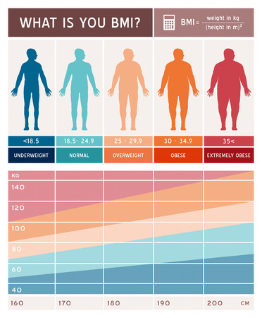 chart vector: body mass index