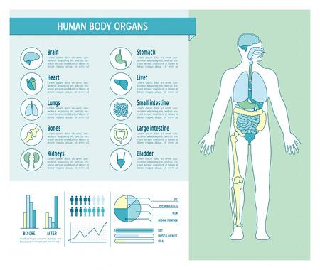 anatomia humana: Infografía cuidado de la salud del cuerpo humano, con médicos iconos, órganos, gráficos, diagarms y copia espacio Vectores