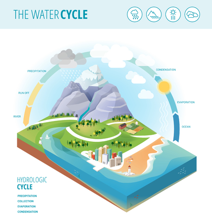 The water cycle diagram showing precipitation, collection, evaporation and condensation of water on a landscape section, icons set