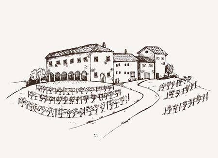 restaurante italiano: Boceto Vineyard mano raíces dibujado, antigua finca tradicional italiana con gran viñedo