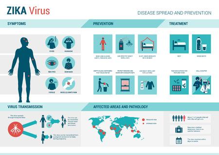 fiebre: Zika infograf�a virus: prevenci�n, s�ntomas y tratamiento Vectores