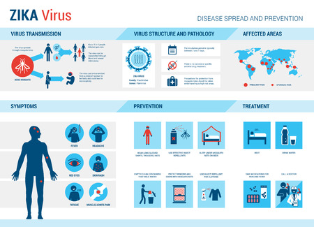 infection: Zika virus infographic: prevention, symptoms and treatment