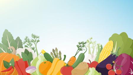 Saisonale frisches Gemüse auf einem sonnigen Himmel Hintergrund, gesunde Ernährung, Landwirtschaft und vegane Ernährung Konzept
