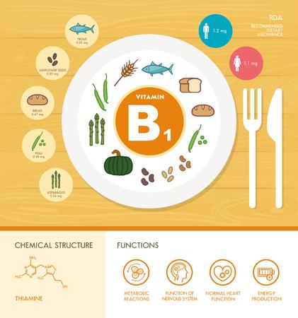 Vitamine B1 voeding infographic met gezondheidszorg en voedsel pictogrammen: voeding, gezonde voeding en welzijn concept
