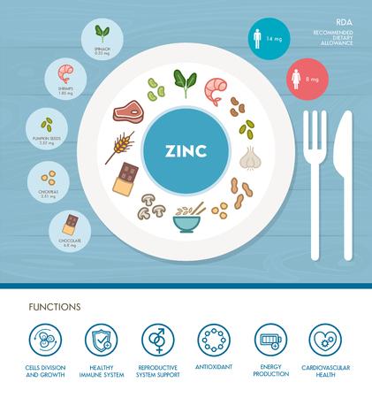 Zinco nutrizione minerale infografica con assistenza sanitaria e alimentare icone: dieta, cibi sani e concetto di benessere