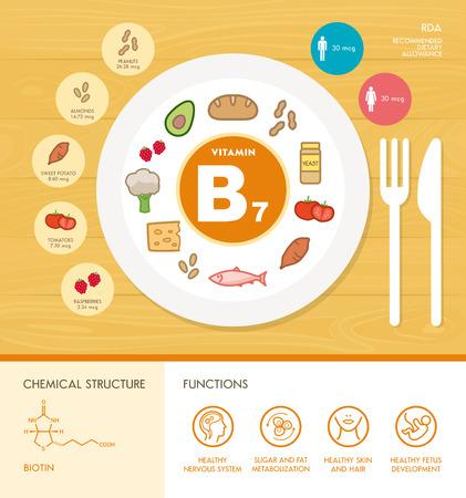 Vitamin B7 Ernährung Infografik mit medizinischen und Lebensmittel-Icons: Ernährung, gesunde Ernährung und Wellness-Konzept