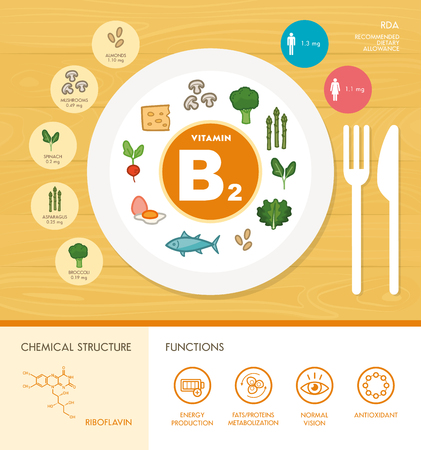 minerals: Vitamin B2 nutrition infographic with healthcare and food icons: diet, healthy food and wellbeing concept