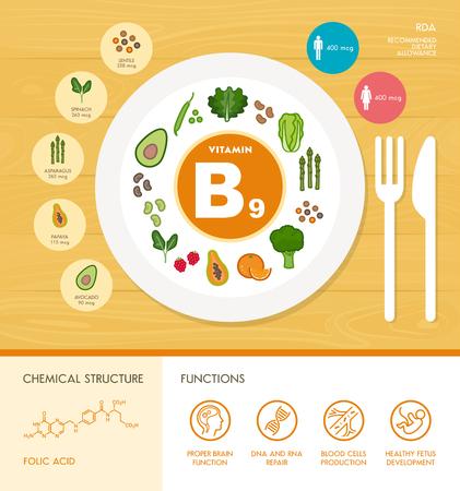 Vitamine B9 nutrition infographique avec la santé et des produits alimentaires icônes: régime alimentaire, des aliments sains et le concept de bien-être