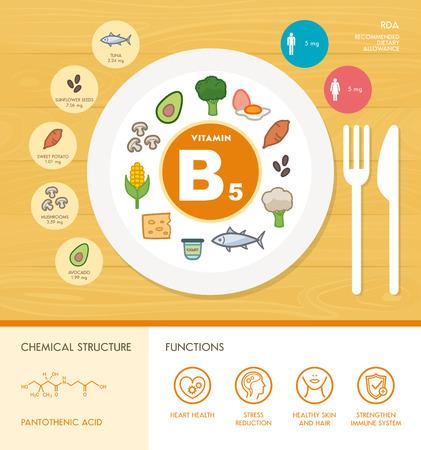 La vitamina B5 infografía nutrición con medicinas y alimentos iconos: dieta, alimentos sanos y del bienestar