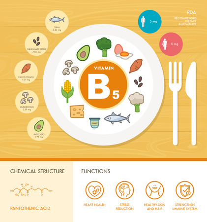 food dish: Vitamin B5 nutrition infographic with medical and food icons: diet, healthy food and wellbeing concept Illustration