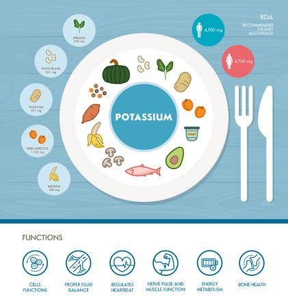 Kalium Mineralstoffernährung Infografik mit medizinischen und Lebensmittel-Icons: Ernährung, gesunde Ernährung und Wellness-Konzept Vektorgrafik