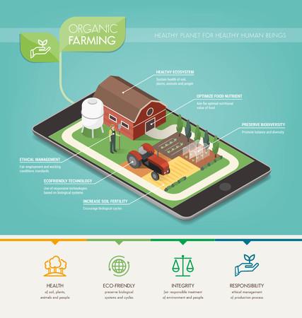 principios de agricultura ecológica, el cuidado del medio ambiente y la producción de alimentos infografía Ilustración de vector