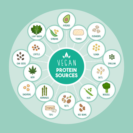 sources: Vegan protein food sources infographic with food icons Illustration