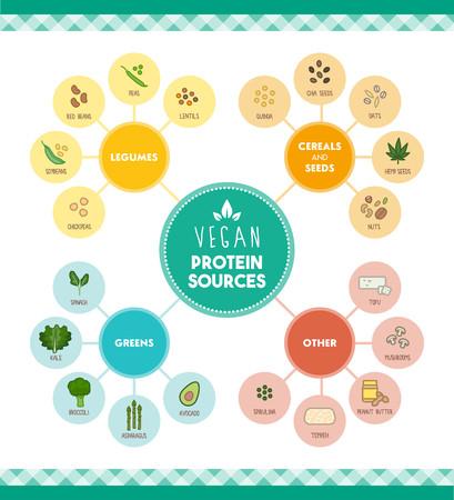 Proteínas fuentes de alimentos veganos infográficas con iconos de alimentos y categorías Foto de archivo - 58290130