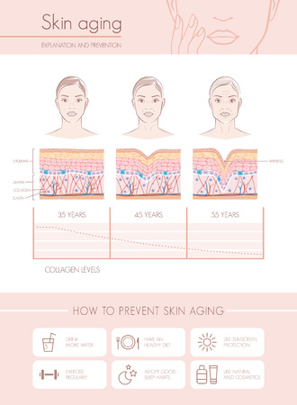 Skin aging diagrams and stages, anti aging prevention tips and female faces