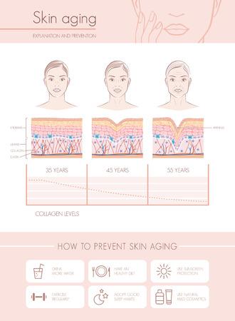 Vieillissement de la peau des diagrammes et des stades, des conseils anti prévention du vieillissement et des visages féminins