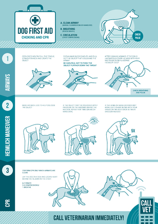 cpr: Dog cpr and first aid, pet emergency procedure for chocking and reanimation with stick figures Illustration