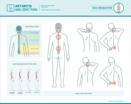 Back pain and body posture infographic with anatomical illustrations