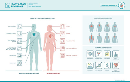 Heart attack symptoms on men and women infographic, pain location and prevention tips