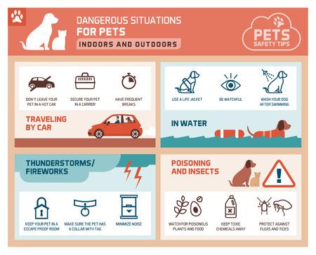 Infografía de consejos de seguridad para mascotas con íconos: cómo proteger a sus mascotas de los peligros