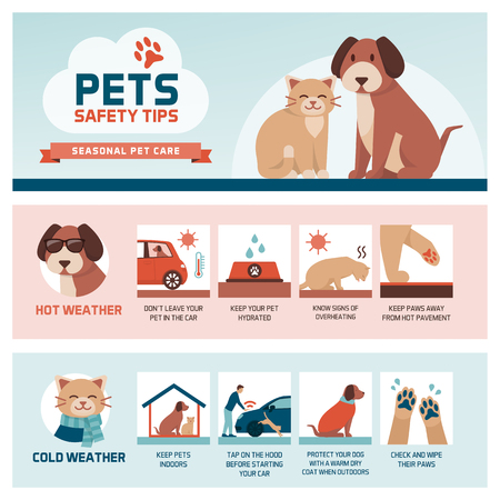 Seasonal pet safety tips infographic with icons: how to protect your pet from heat and cold in summer and winter