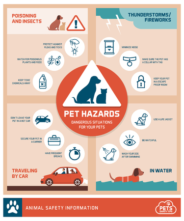 Pet safety tips infographic with icons: how to protect your pets from hazards Illustration