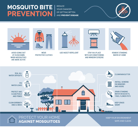 Mosquito bite prevention infographic: how to avoid mosquito bites and how to keep your house safe Stock Illustratie