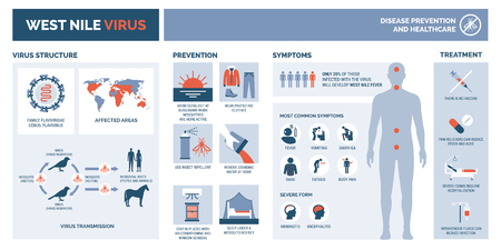 West nile virus infographic: virus structure, transmission, prevention, symptims and treatment