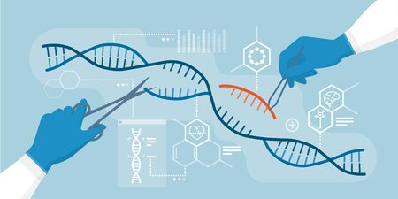 Scientists analyzing DNA helix and editing genome within organisms, CRISPR technology Ilustração