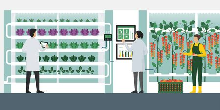 Indoors hydroponics vertical farming with workers checking plants and harvesting, smart agriculture concept
