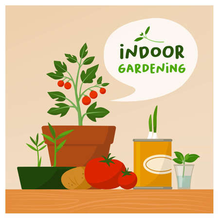 Indoor garening and sustainable lifestyle: home grown plants and vegetables