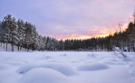 snowdrifts: Winter landscape. Frozen lake, with snowdrifts and forest at sunset. Stock Photo