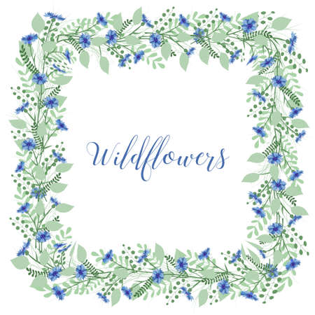 cornflowers: The wreath of cornflowers flowers on a white background. Decor element. Sweetheart card.