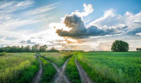 夕暮れ時のフィールドで岐路に立って。分割田舎道。美しい雲。農村の風景です。 写真素材