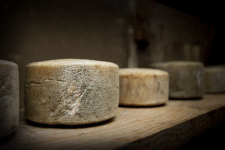 animal origin: Some old sheep cheeses, spanish cheeses sheep s cheese