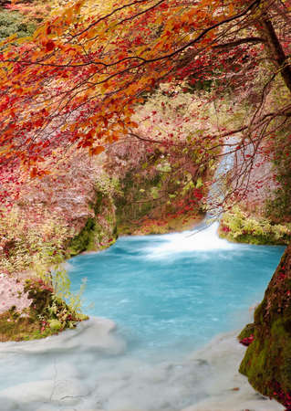 Turquoise waterfall into an autumn river, streams   Fall season