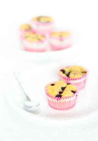 Fresh cakes with blackberries, berry muffins Stock Photo