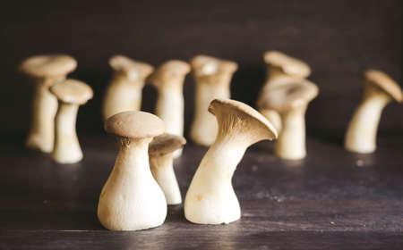 cep mushroom: Mushroom Boletus over Wooden Background. Autumn Cep Mushrooms Stock Photo