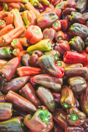 A colorful mix of the freshest red peppers Stock Photo
