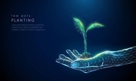 Abstract giving hand with young plant in earth.