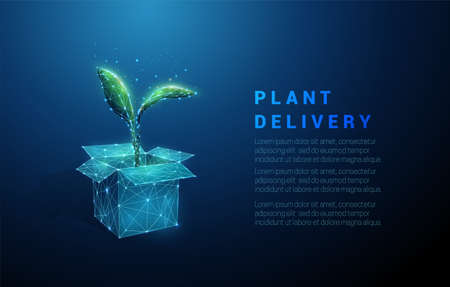 Abstract low poly open box and green plant Illustration