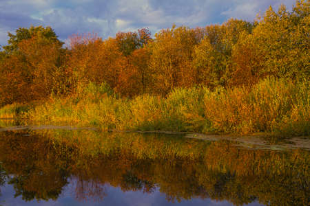 autumn landscape, deciduous forest with sand pits and water, sunset