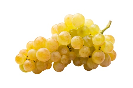 fully: White grape (riesling) fully isolated