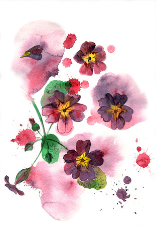 aquarelle painting art: Watercolor hand painted illustration with purple petunia on multicolor background. Floral birthday card.
